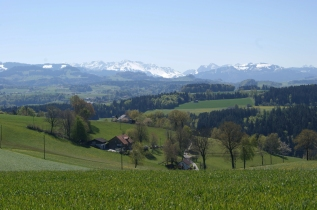 Mittags-Panorama